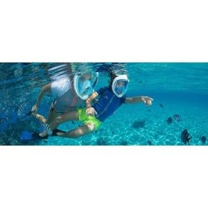 Other - 180° Panoramic View full face Snorkel Mask